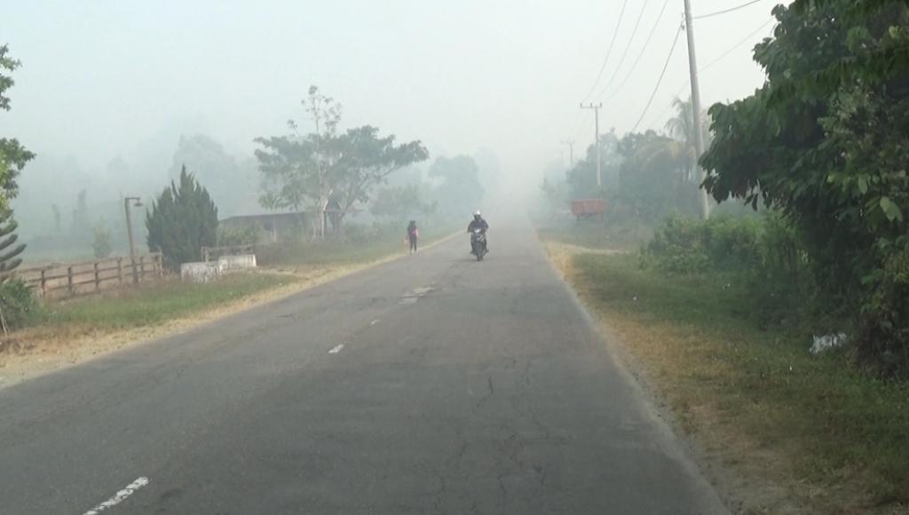 Empat Kecamatan di Koltim Diselimuti Asap Kebakaran Lahan
