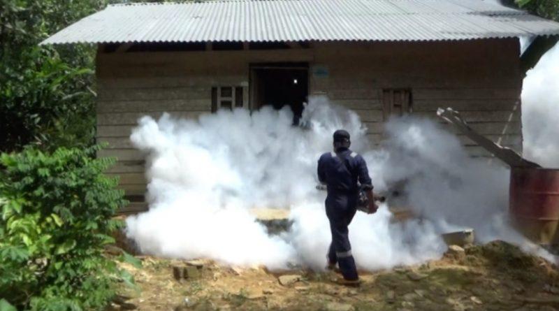 Aedes Aegypti Mulai Menyerang Kendari, Dinkes Lakukan Fogging