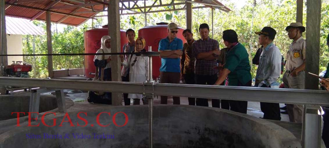Badan Ketahanan Pangan Bersama FAO Indonesia Tinjau Pengolahan Sagu di Angata