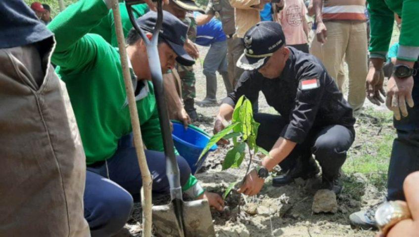 Wabup Kolut Dorong Revitalisasi Kakao