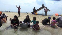 Mau Berwisata Dilaut Bebas, Toari Tempatnya, Ada Pantai Pasir Putih dan Biota Laut