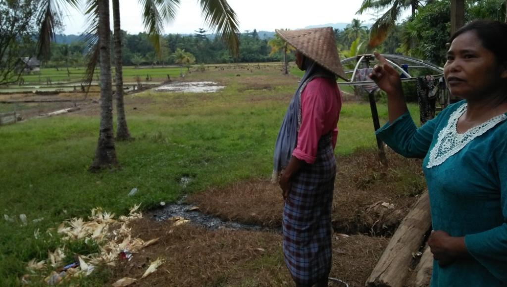 Sejumlah Petani Desa Een Sumala saat menunjukkan sawahnya yang membutuhkan hand traktor