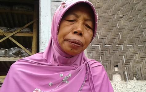 Ibu Supyah merupakan wanita ulet pemetik jamur kancing di bromo tengger. FOTO : ASL