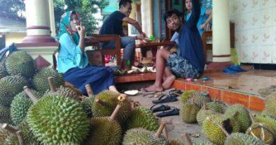Menikmati Durian Langganan Bupati Jepara