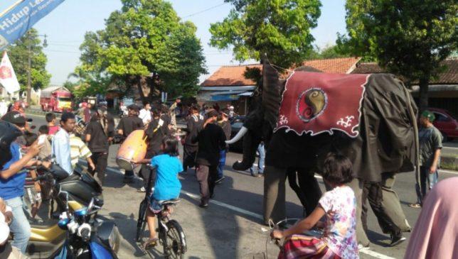 Ribuan Santri dan Seekor Gajah ikuti Kirab Parade Hadroh