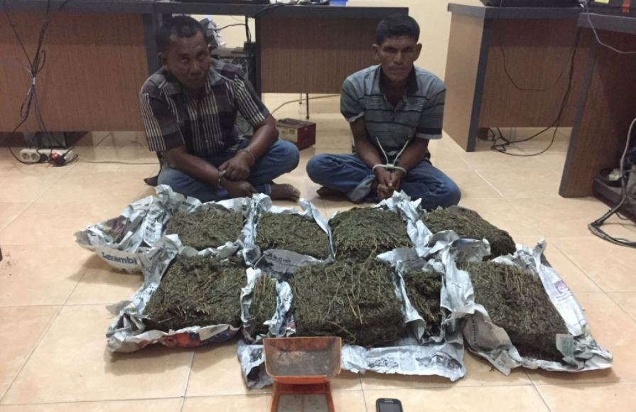 Dua tersangka ini yang ditangkap aparat kepolisian bersama barang bukti berupa daun ganja kering. FOTO : ROBY SINAGA