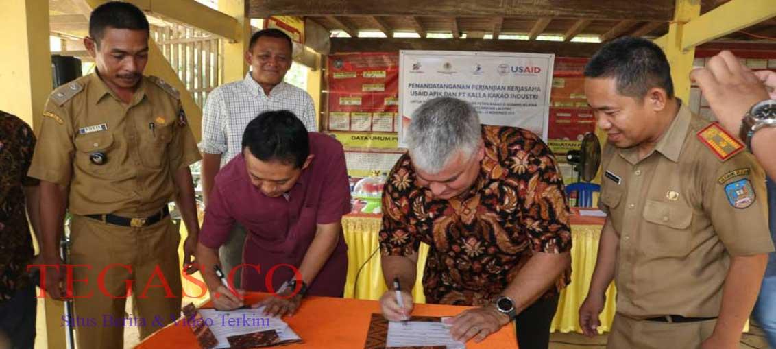 USAID APIK dan KKI Teken MoU Ketangguhan dan Kemajuan Kakao Konsel