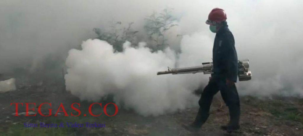 Cegah DBD, KKP Kota Kendari Gencar Lakukan Penyemprotan Fogging