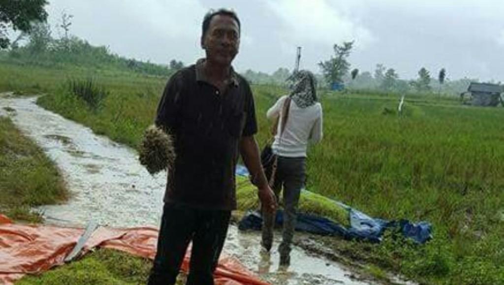 Kadis Pertanian Kunjungi Petani YangTerkena Dampak Banjir
