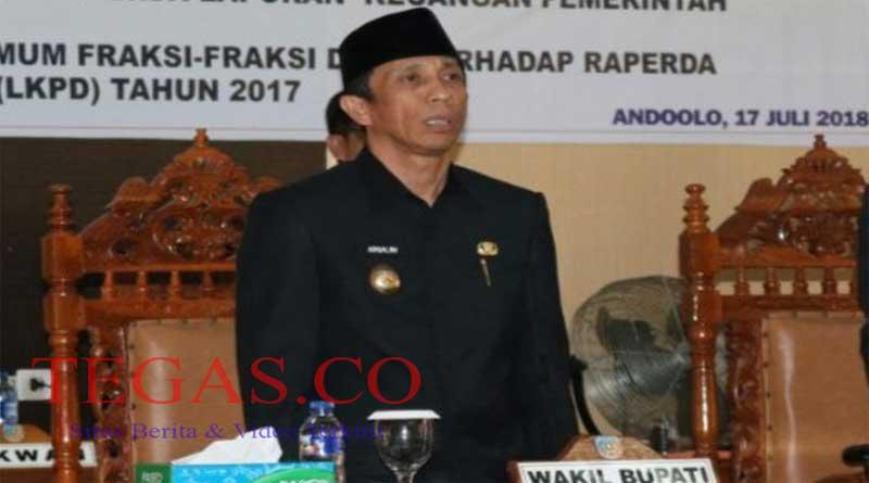 Wakil Bupati Prihatin Minimnya yang Lulus CPNSD Asal Konsel