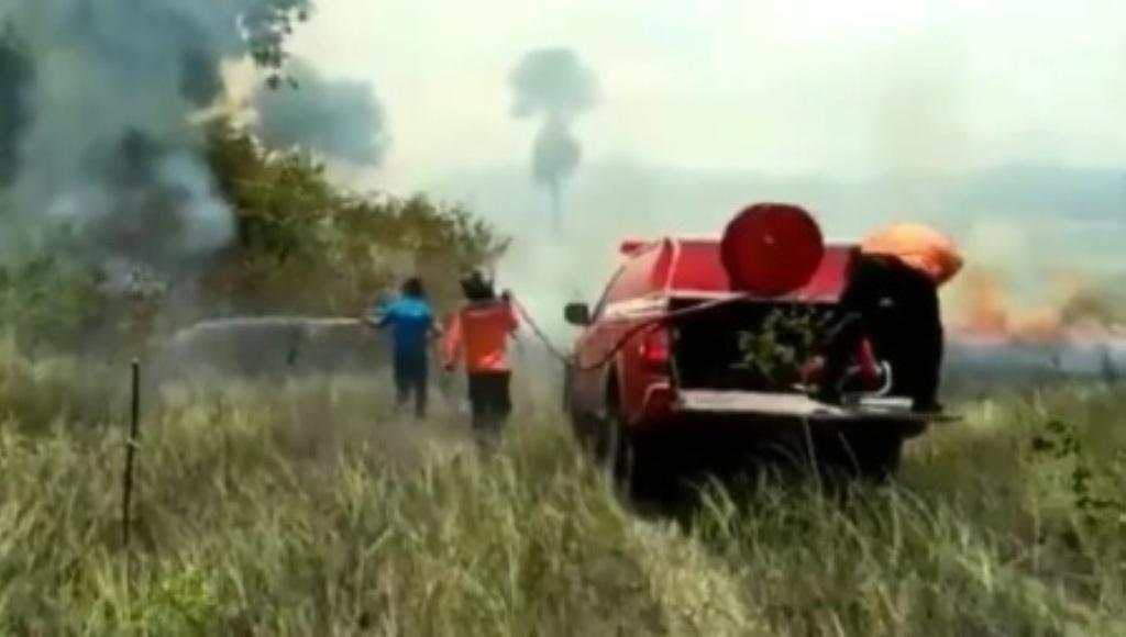 Puluhan Ribu Hektar Lahan Konservasi Terbakar