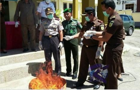 pemusnahan Barang Bukti narkotika jenis sabu dan senjata tajam di halaman kantor kejari Muna. FOTO : ROS