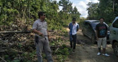 Genjot Pembangunan JUT, buka keterisolasian Petani