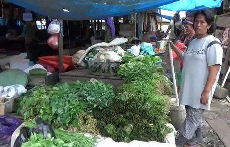 pedagang sayur di kolaka keluhkan kurangnya pasokan sayur sehingga harganya juga mahal. FOTO : ASDAR LANTORO