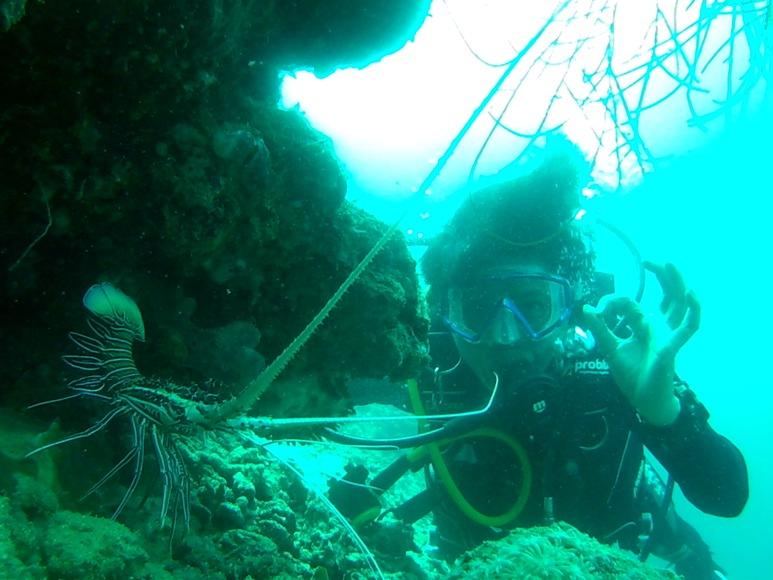 Wisata bawa laut di pulau pelangi. Penyelam akan mendapat lobster saat melakukan snorkling di bawa laut pulau pelangi. FOTO : ASDAR LANTORO