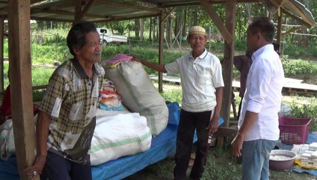 Pedagang: Pengelolaan Pasar Poni-Poniki Koltim Amburadul