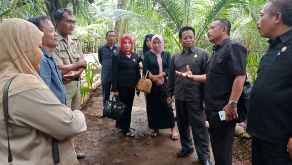 Tertarik Budidaya Kelapa Kopyor Komisi II DPRD Konsel Sambangi Pemda Pati