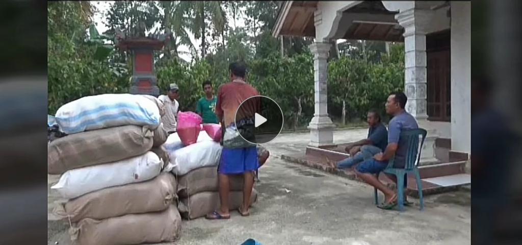 Pemerintah Kucurkan Bantuan Pertanian di Sulawesi Tenggara