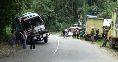 Mobil Truk Pengangkut Pakan Ayam Tabrakan, Sopir Dilarikan ke RS