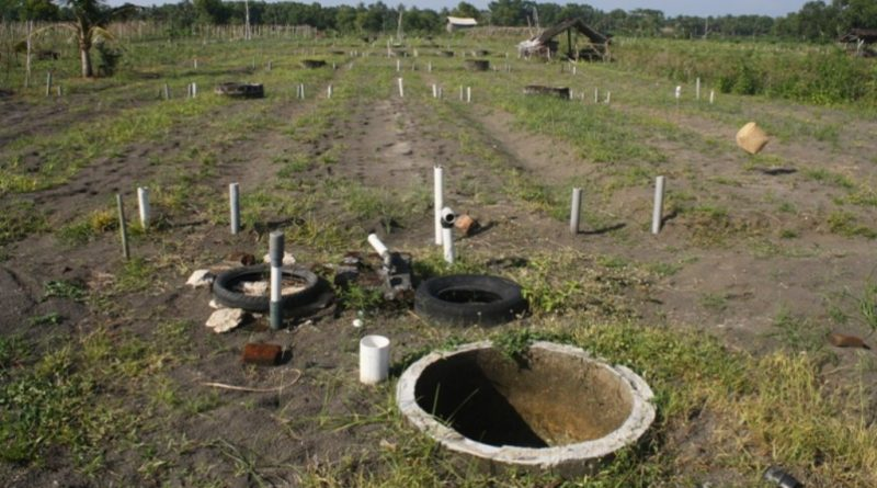 Olah Tanah Pertanian Warga Untuk Produksi Sayur